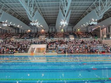 Swimming Gala Finals